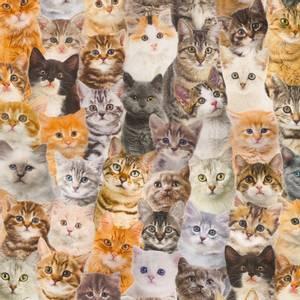 Bilde av Bomull linlook katter
